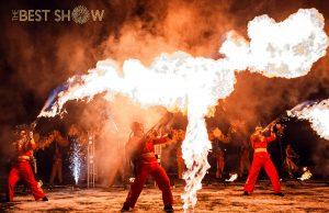 Шоу на китайский новый год